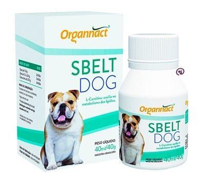 Sbelt Dog