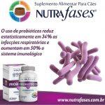 suplemento-alimentar-nutrafases-probiotico-60-tabletes