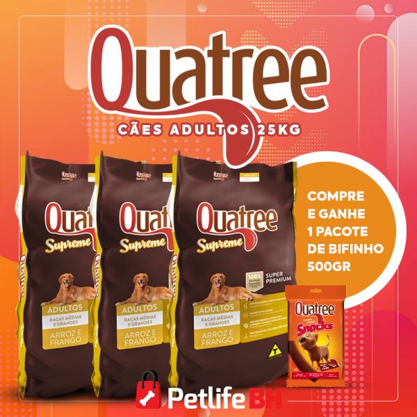 PetlifeBH - Quatree02